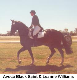 avoca black personals Personal ads for avoca, ar are a great way to find a life partner, movie date, or a quick hookup personals are for people local to avoca, ar and are for ages 18+ of either sex.