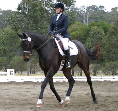 The Virtual Equestrian Awha Nsw Branch Gala Weekend