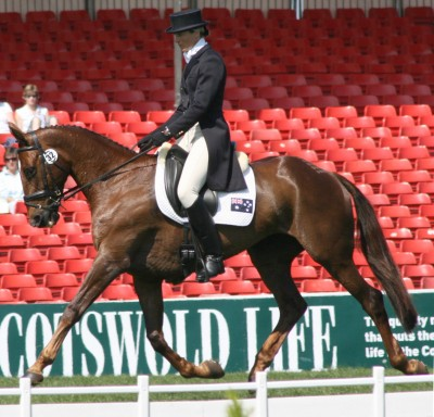 The Virtual Equestrian Badminton Ht Day One