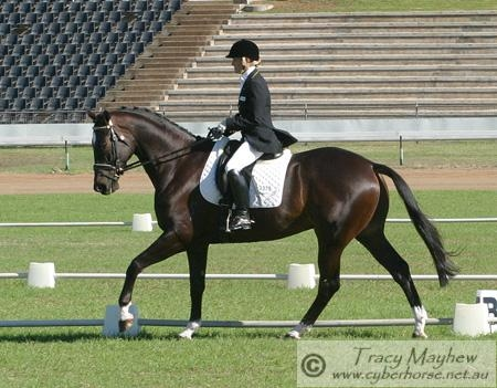 The Virtual Equestrian Toowoomba Dressage Champs