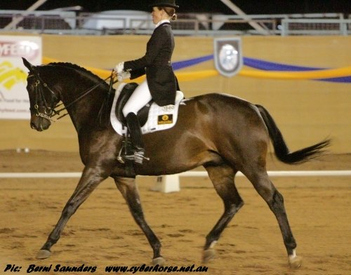 The Virtual Equestrian Regional Olympic Team Assessment