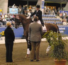 The Virtual Equestrian Horseland National Dressage