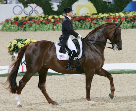The Virtual Equestrian Debbie Mcdonald Clinic For